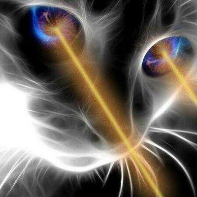 https://twitter.com/Laser_Cat